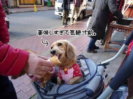 028_20111212011011.jpg
