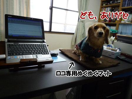 026_20111208214402.jpg