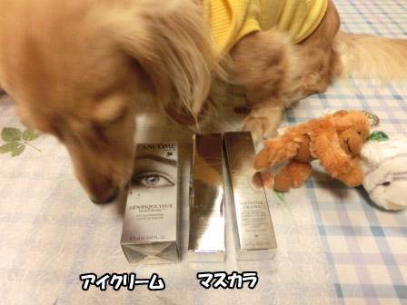 035_20120923001023.jpg