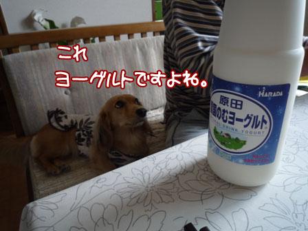 049_20111030225121.jpg