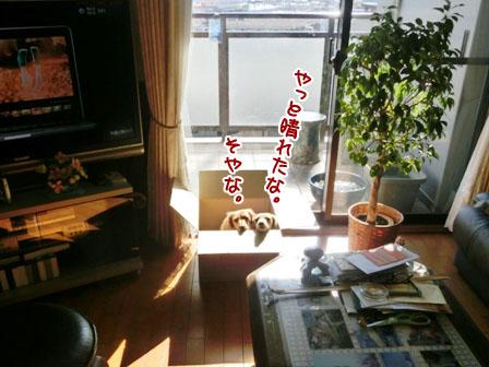 041_20121125225920.jpg