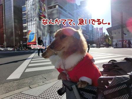 002_20121225234820.jpg