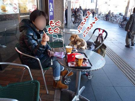 015_20111218125841.jpg