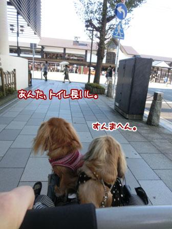 001_20131027220658aa9.jpg