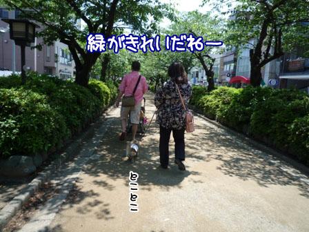 056_20120520002657.jpg