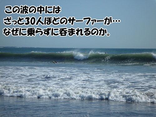 bb989ae4.jpg