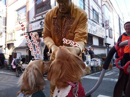 047_20111205000825.jpg