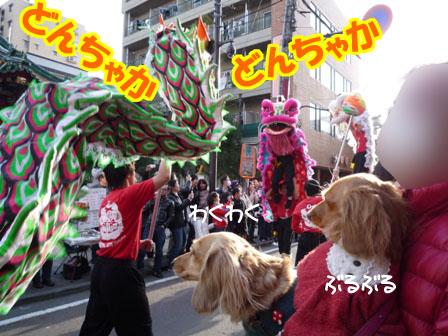 101_20120321232301.jpg