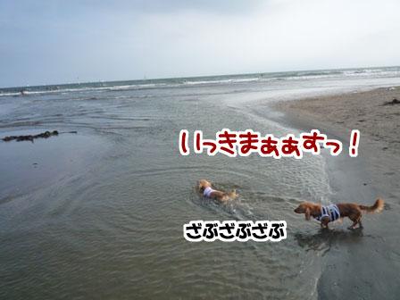 009_20110724225651.jpg