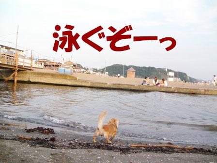 079_20110802003935.jpg