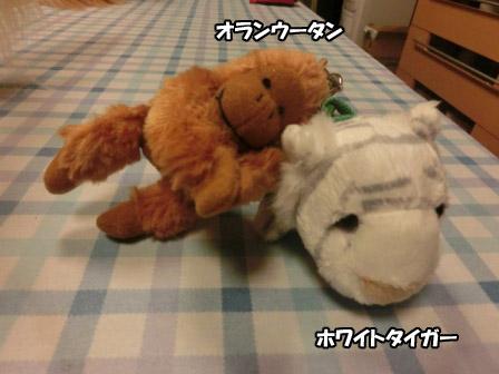 033_20120923001024.jpg
