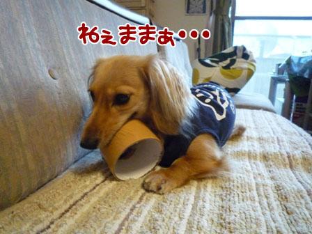 001_20110803150953.jpg