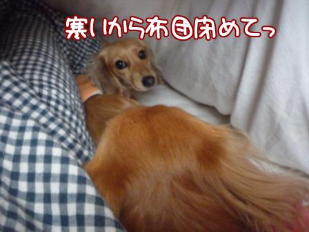 003_20110221211655.jpg