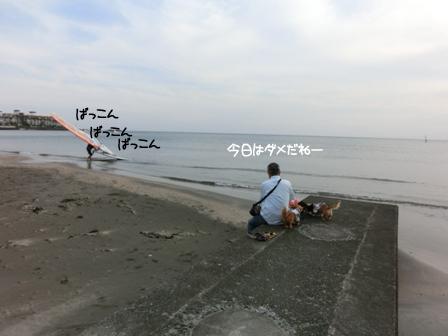 201605204.jpg
