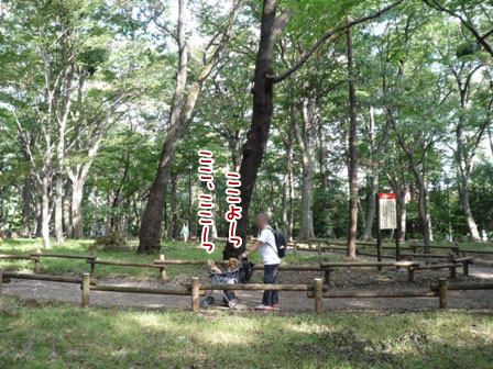 046_20110925232605.jpg