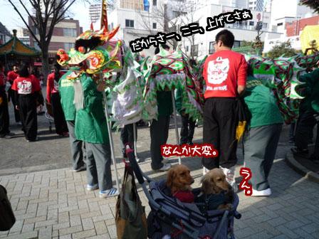 052_20120320230903.jpg