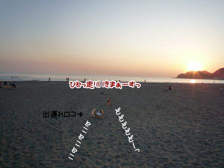 004_20111031225242.jpg
