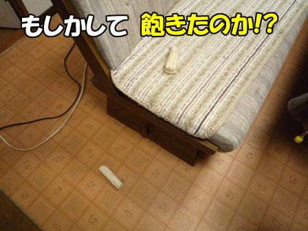003_20110127230406.jpg