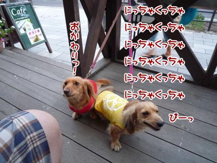 001_20110825225533.jpg