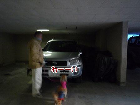 001_20111225013309.jpg