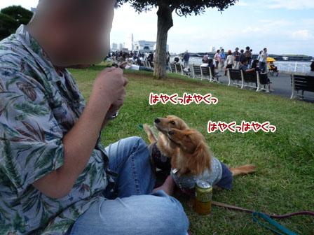 022_20110926224244.jpg