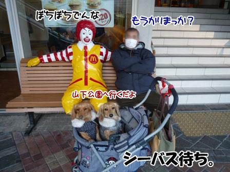 065_20120213005129.jpg
