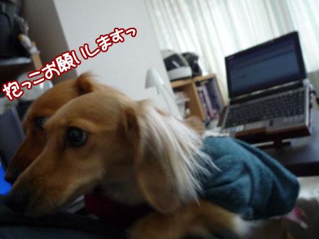 012_20111208214403.jpg