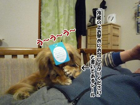 014_20120228212544.jpg