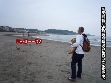 013_20110604001608.jpg