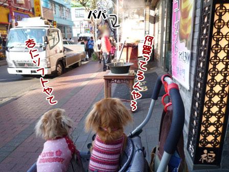 021_20111212011025.jpg