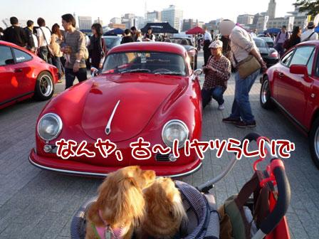 053_20111114212153.jpg