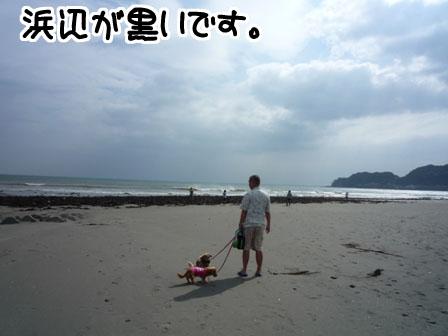 060_20110721230750.jpg