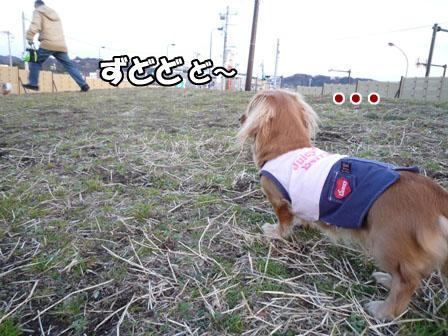 006_20110216231057.jpg