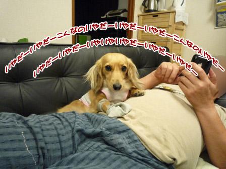 028_20120720233401.jpg