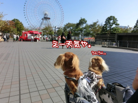 024_20121022003032.jpg