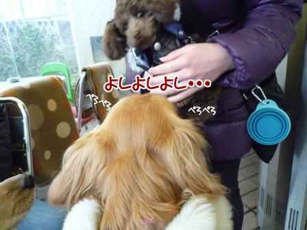 022_20120119235103.jpg