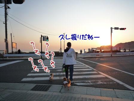 002_20111031225242.jpg