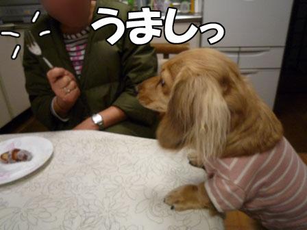 018_20120122003037.jpg