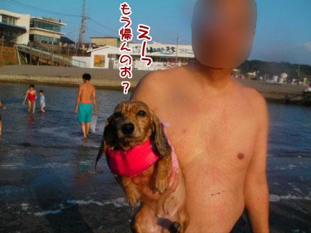022_20110828225930.jpg