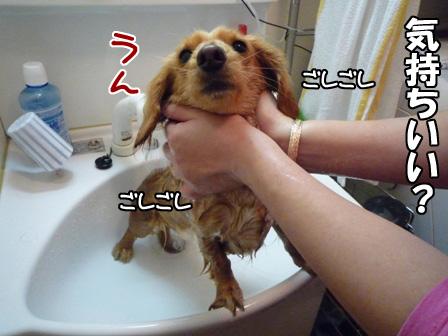036_20110226223309.jpg