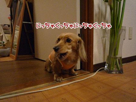 022_20120215225421.jpg