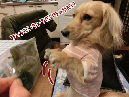 028_20121026001057.jpg