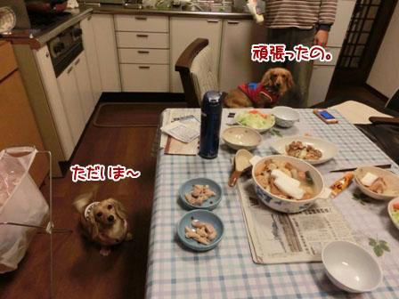 008_20121126235416.jpg
