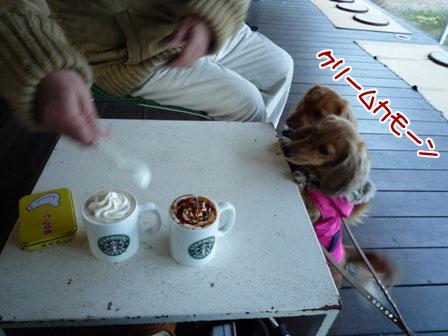 006_20111225013309.jpg
