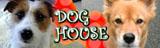 DOG HOUSEへ