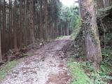 秋葉神社・三体の月への道。