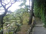 栗林公園(その8)。