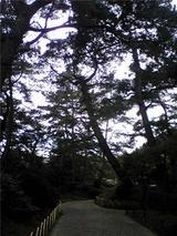栗林公園(その7)。