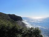 出羽島の海岸線。