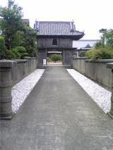 千光寺の臥竜梅(その2)。